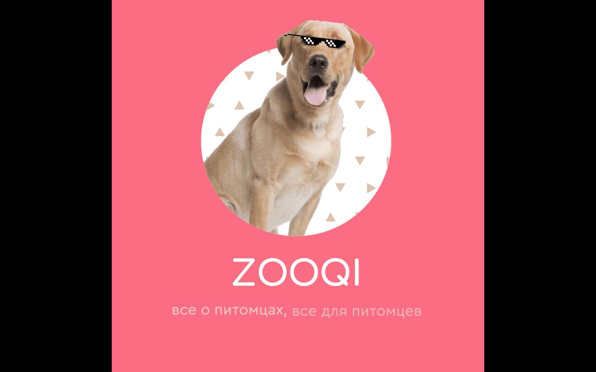 Zooqi Ai e-comerce video